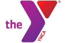 Purple Y Logo_rgb