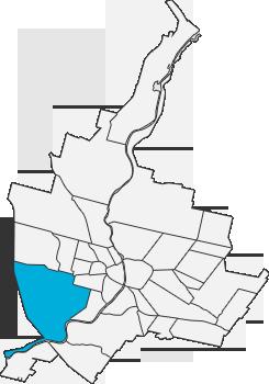 the 19th Ward